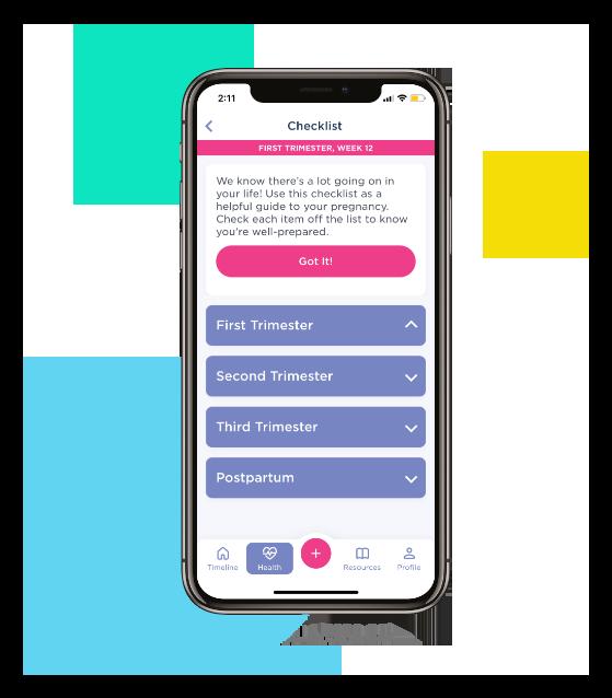 Babyscripts Pregnancy Health Assessment in App